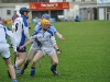 leinster-senior-hurling-final-2013-016