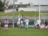 leinster-senior-hurling-final-2013-029