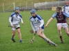 leinster-senior-hurling-final-2013-051