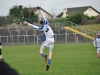 leinster-senior-hurling-final-2013-056